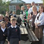 success 1 dog fouling campaign
